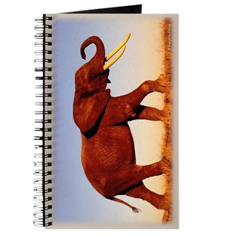 Elephant Walk Journal