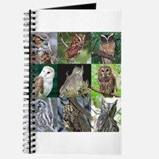 Cool Eagle personalized Journal