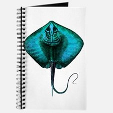 RAY Journal