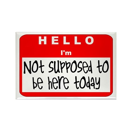 Hello I'm NSTBHT Rectangle Magnet (10 pack)