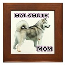 Malamute Mom4 Framed Tile