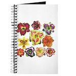 Ten Daylilies Journal