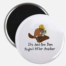 Unique Beaver Magnet