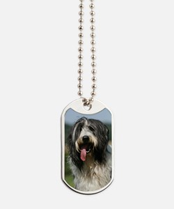 Bearded Collie Dog Tags