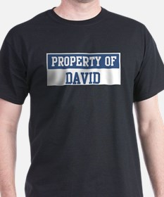 Property of DAVID T-Shirt