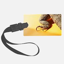 Cool Bearded dragon Luggage Tag