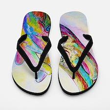 Cute Asl Flip Flops