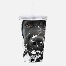 BLACK_LAB_SNOW_FRAME.p Acrylic Double-wall Tumbler