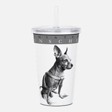 minpinframed.png Acrylic Double-wall Tumbler