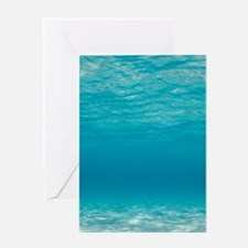 Underwater Greeting Cards