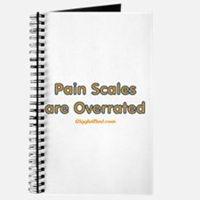 Pain Scales are Overrated Journal
