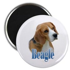 Beagle Name Magnet