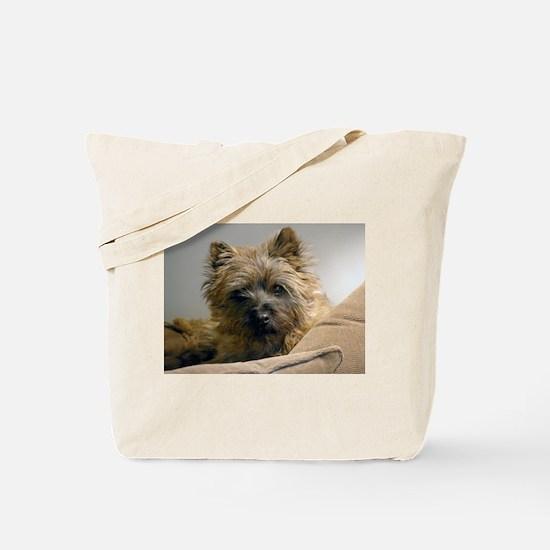 Pensive Cairn Terrier Tote Bag