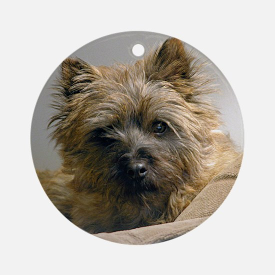Pensive Cairn Terrier Ornament (Round)