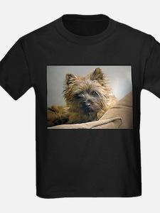 Pensive Cairn Terrier T