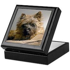 Pensive Cairn Terrier Keepsake Box