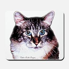 Maine Coon Cat Portrait Mousepad