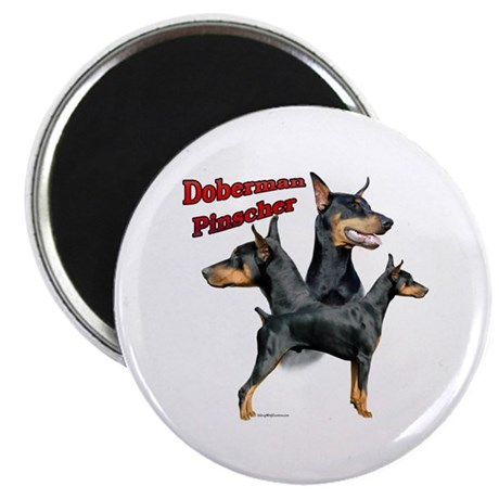 "Dobie Trio2 2.25"" Magnet (100 pack)"