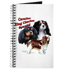 Cavalier Trio2 Journal