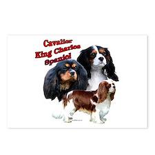 Cavalier Trio2 Postcards (Package of 8)