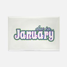 Due In January Rainbow Rectangle Magnet