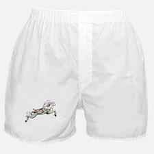 White Jumper Carousel Boxer Shorts