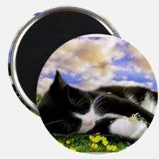 Tuxedo Kitty Magnets