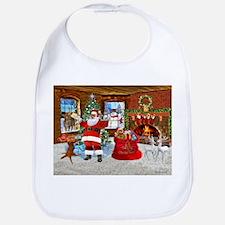 Merry Christmas From Santa Bib