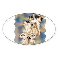 meerkat group Oval Decal