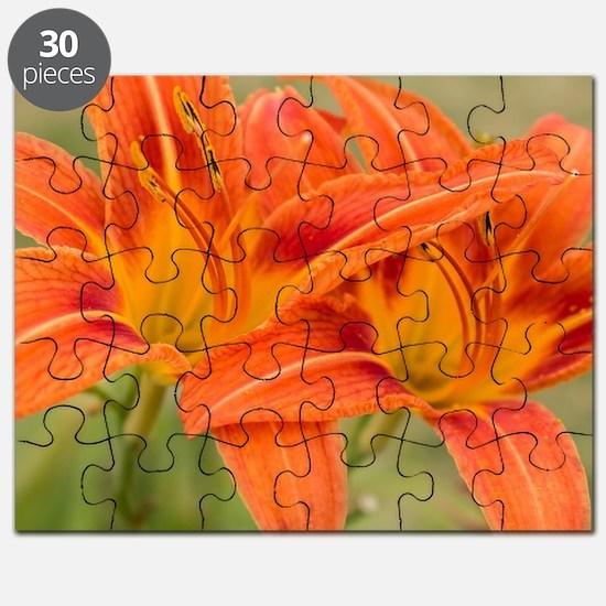 Cool Orange flowers Puzzle
