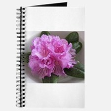 Rhododendron Journal