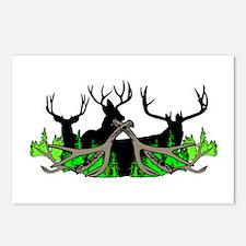 Deer shed 3 Postcards (Package of 8)