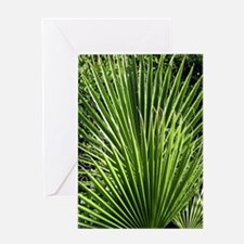 Palm Fronds Greeting Cards