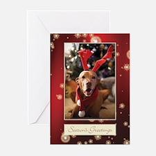 Vizsla Christmas s Cc002 Greeting Cards