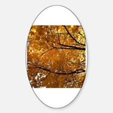Unique Autumn leaves Decal