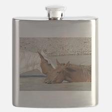 Wild Horses of Sandwash Basin Flask