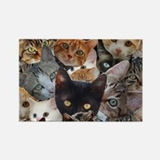 Kitty Collage Magnets