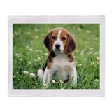 Beagle Fleece Blankets