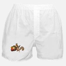 Squirrel with Cornucopia Boxer Shorts