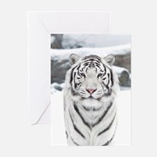 White Tiger Greeting Cards (Pk of 10)