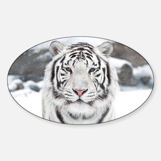 White Tiger Sticker (Oval)