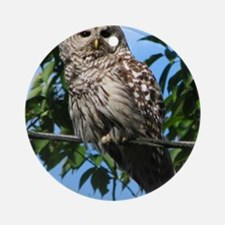 Barred Owl On Wire Round Ornament