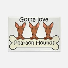 Cute Pharaoh hound Rectangle Magnet