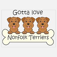 Cute Norfolk terrier Wall Art
