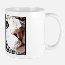 StacyJMT MyPaws cute Fluffy cat mug