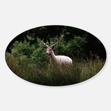 White Stag by Tom Conway Decal