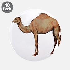 """DESERT 3.5"""" Button (10 pack)"""