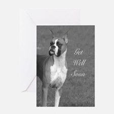 Get well soon Boxer Dog Greeting Cards