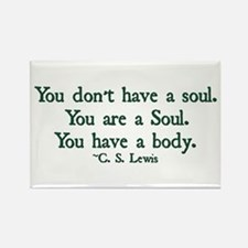 You Don't Have a Soul Rectangle Magnet