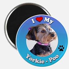 Cute Yorkiepoo Magnet